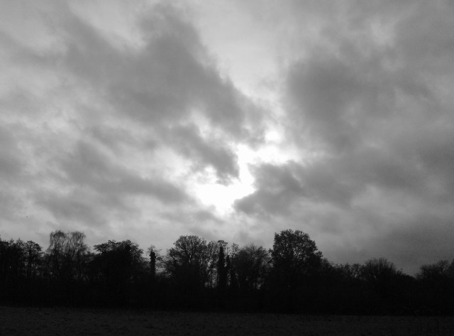 Untitled-Grayscale-01