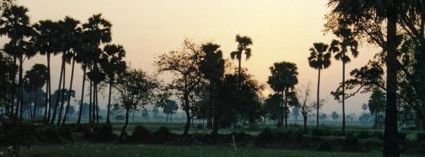 dawn-panorama