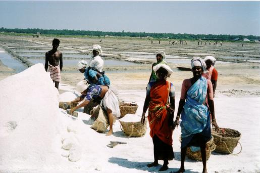 salt-workers