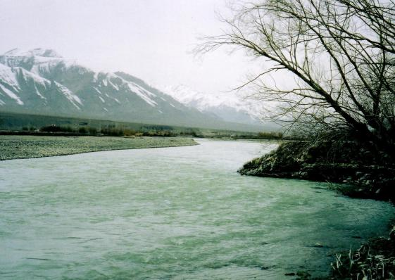 indus at chog