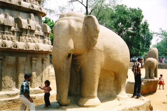 5 rathas elephant